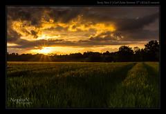 Coucher de Soleil sur les Serres (NeptuN | neptun-photography.com) Tags: sunset soleil coucher paysage soe villeneuve serres ringexcellence nex7 cz24mm18