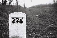 276 (sFdMrL) Tags: film hungary middleofnowhere foma fomapan electro35gsn yashica35gsn 35gsn