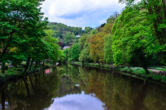 On Bridge Over River Derwent @ Matlock Bath (Lip957) Tags: trees reflection tree nature water river outdoors bath matlock