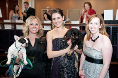 bark ball 2013 rich kessler photography 026 of 194 (WashHumane) Tags: charity events equinox ronaldreaganbuilding washingtonhumanesociety eventphotographer sugarandchampagne fashionforpaws washingtondcphotographer northernvirginiaphotographer barkball charityphotographer salamanderinn