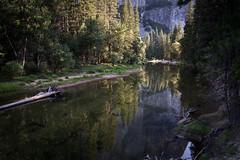 Reflections of El Capitan -- Yosemite National Park (Phil Chen (agfachen)) Tags: park trees nature woods scenic national yosemite yosemitenationalpark