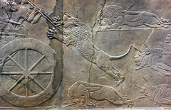Lion Hunts of Ashurbanipal, lion attacking from the rear slain
