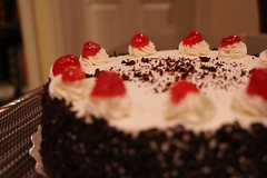 i want food (dawn-elle) Tags: food love cake yum sweet chocolate foodporn firstday junior