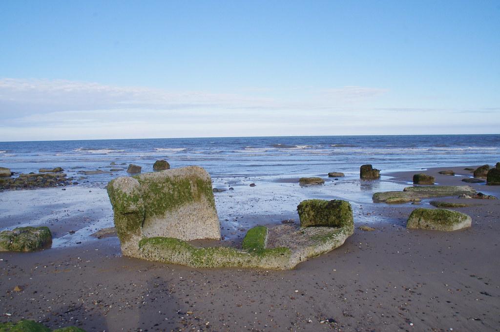 Hornsea Beach Dog Restrictions