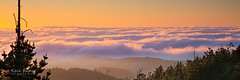 Sunset over a sea of fog (Kevin English Photography) Tags: california travel winter sunset sea sky sun sunlight mountain color beautiful silhouette fog skyline clouds season landscape gold golden evening coast twilight glow view cloudy outdoor hiking background country relaxing dramatic wave scene hills trail coastal backpacking pointreyes hillside climate cloudscape rolling coastrange