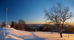Winter Sunset Above Oslo (RobertCross1 (off and on)) Tags: city winter sunset panorama snow tree oslo norway landscape norge europe flag bluesky olympus omd holmenkollen em5 1250mmf3563mzuiko