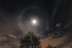 Moon Halo Tree (twinklespinalot) Tags: moon canon nightscape wideangle orion taurus gemini 1022mm moonhalo atmospherics canoneos700d jupiterconjunction