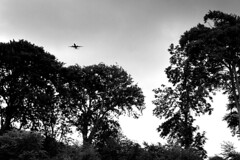 Plane coming over the trees near St Doolagh's (Dave Road Records) Tags: churches stoneroof malahide stonechurch irishchurch doulaghs stdoulaghs stdoolaghs doolaghs saintdoolaghs