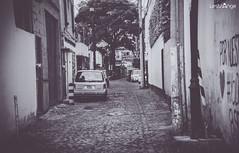 Calles de Coyoacan (Aldoux Lestrange) Tags: street old city urban de mexico df ciudad urbano coyoacan distritofederal 2014 lestrange aldoux vision:street=0673 vision:outdoor=0922