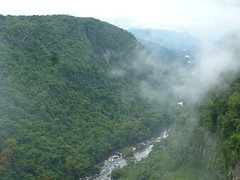 Forested Potaro River Valley