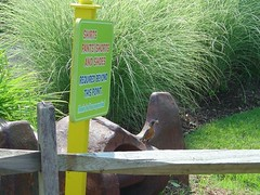 DSC05932 (thewestate) Tags: road park tower sc amusement nc gun top drop theme uniforms thunder zone carowinds afterburn