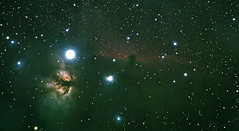 Horsehead and Flame Nebulas (Phil Ostroff) Tags: nikon flame nebula orion horsehead celestron 80mm ssag cgem astrometrydotnet:status=solved d7000 astrotelescopes astrometrydotnet:id=nova1010723 postroff1973