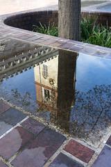 St Giles Cripplegate (Spannarama) Tags: uk reflection tree london tower church water puddle barbican treetrunk stgilescripplegate