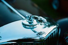 Jaguar Mk IV (Iain Compton) Tags: car classiccar filmphotography kiev10 cassoviaclassic
