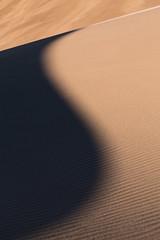 Subtle Shadows (Brian Truono Photography) Tags: shadow nature sunrise landscape us nationalpark sand colorado unitedstates wind nps dunes dune sanluisvalley curve shape nationalparkservice greatsanddunes windblown subtle