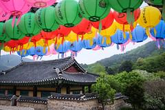 069 (gmouret92) Tags: temple fuji lantern southkorea lampion coredusud x100t anniversairebouddha geobongsa