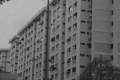 SINGAPORE (georgiacoates) Tags: film singapore asia grain culture infrastructure housing noise sg hdb