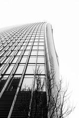 Over trees (lorenzoviolone) Tags: england blackandwhite bw london monochrome skyscraper blackwhite unitedkingdom finepix fujifilm skygarden walkietalkie agfascala200 mirrorless vsco vscofilm fujix100s x100s fujifilmx100s travel:uk=londonapr16