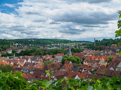 Tuebingen E5310247_21 (tony.rummery) Tags: buildings germany de town olympus historic viewpoint tuebingen omd tbingen badenwrttemberg em10 mft microfourthirds