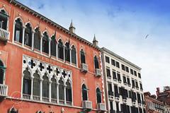 2201 (Bethie Inthesky) Tags: venice windows italy history architecture hotel gothic jolie johnnydepp danieli