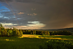 at the Rainbows End (redy1966) Tags: wood sunset nature forest gold golden rainbow quarter greeen waldviertel oesterreich 2016