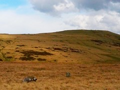 Nant Tawr 13 (Helen White Photography) Tags: wales ancient rivers brecon moor usk blackmountains sacredsite stonecircles alignment divinefeminine divinemasculine nattawr