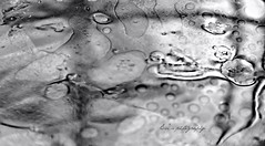_DSC3309 (~evi's...~) Tags: bw abstract water reflections