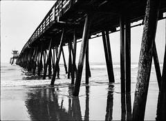 Beneath The Pier (greenschist) Tags: california usa film water analog pier blackwhite sandiego pacificocean imperialbeach bronicarf645 fomapan200 zenzanonrf65mmf4