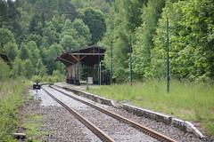 Jedlina-Zdrj train station 11.06.2016 (szogun000) Tags: railroad station canon track platform poland polska rail railway pkp lowersilesia dolnolskie dolnylsk canoneos550d canonefs18135mmf3556is jedlinazdrj d29285 d29286