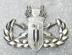 Singapore Air Force Explosive Ordnance Disposal (EOD) (Sin_15) Tags: singapore military disposal eod badge airforce insignia explosive saf ordnance