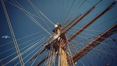 IMG_7247V2 (carloxmatamoros) Tags: river boat ecuador marine barco ship marines guayaquil buque flagship guayas marinos rutaviva allyouneedisecuador viajaprimeroecuador feelagaininecuador discoversouthamerica fotoecua instameetecuador whattodoinecuador feelecaudor ecuaworld lovesunitedecuador guayaquileidestino ecuadorestrella yoloecuador ecuadorturisrico cinconuevetres recorreecuador