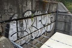 Erupto327 (Psychedelic Wardad) Tags: portland graffiti sws d30 gtb erupto dirty30 vts a2m erupto327