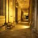 Glowing Corridor