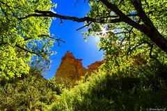 le colorado provencal: les chemines des fes-001 (bonacherajf) Tags: lubron rustrel provence colorado ocres chemines