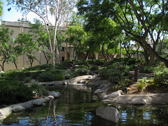 Turtle Pond at Cal Tech (Robb Wilson) Tags: caltech pasadena afternoon turtlepond collegecampus