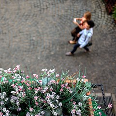 Petite. (megatshamsulnizam) Tags: flowers flower hotel balcony colmar overlooking tropicale