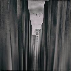 Hear me pray (kristian.pichol) Tags: berlin memorial denkmal war krieg holocaust black white schwarz weis light licht birds vgel sky himmel