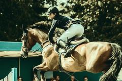 S-Klasse (feldweg) Tags: horse caballo jump jumping s cavallo pferd horseback turnier sprung reiten hest horseriding kon springen sspringen springreiten dersekow