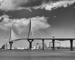 10 Puente la Pepa - Cadiz - Antonio-Seco Amaya