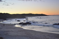 CSC_0173 (JP98AUS) Tags: beach scenery nsw water sunset