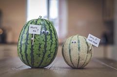 Meloncholy. (Matt_Briston) Tags: me marriage watermelon melon marry canteloupe eugh fruitlove