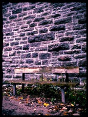 Photography Pics... (danbirks1987) Tags: park brick leaves wall bench relax leaf path sit