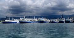 Trans Asia Shipping Lines fleet (cr@ckers43) Tags: cebu sugbo suruysuruy