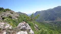 Balkan mountains (Gonrah) Tags: mountains forest balkan