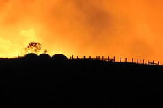 Sunset over a Field (Universal Pops (David)) Tags: wood sunset orange sun black hot nature silhouette rural fence landscape virginia amazing bright zoom farm country flame flare brilliant distant charlottecounty platinumheartaward