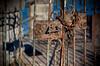 (A Great Capture) Tags: pink orange brown ontario green river rust gate lock rusty niagara falls chain on ald niagarafallscanada canaada ash2276 ashleyduffus