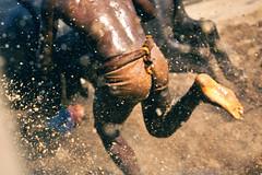 Kambala. (Prabhu B Doss) Tags: india man animal race buffalo beast karnataka udupi mangalore travelphotography 0mm kambala puttur prabhub prabhubdoss bantwala zerommphotography 0mmphotography