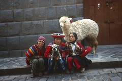 Untitled (the underlord) Tags: street city alpaca peru inca pose photo slide transparency positive expired fujichrome e6 peruvian expiredfilm incan photoopportunity cuscocity fijusensia100