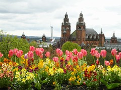 Tulips from Glasgow. (Flyingpast) Tags: park city flowers art gardens museum architecture scotland gallery tulips glasgow scottish westend kelvingrove glasgowuniversity citybreak visitscotland wb2000 tl350
