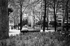 L'homme sur le banc (Marie l'autre) Tags: street blackandwhite bw black paris analog 35mm 50mm dof minolta grain streetphotography hp5 analogue blanc argentique deepoffield x700 selfdeveloped manuallens marielautre olderbutnotold bwfp